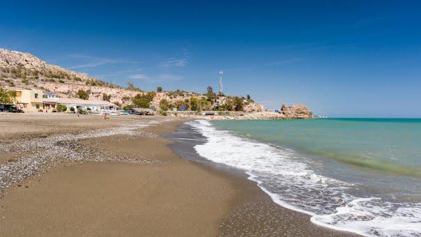 Picture of dog-friendly beach La Arana
