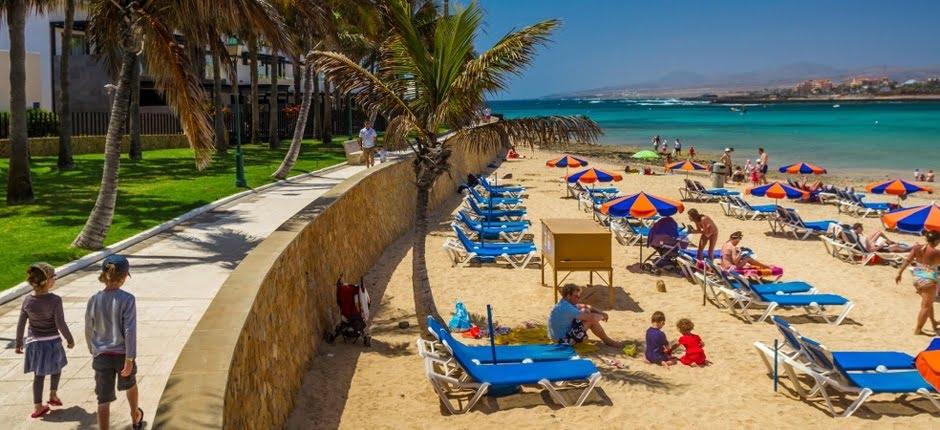 Picture of dog-friendly beach El Castillo