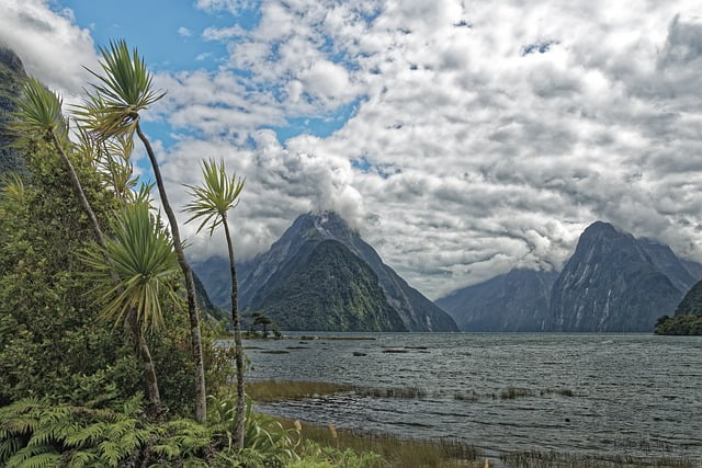 Lands of New Zealand